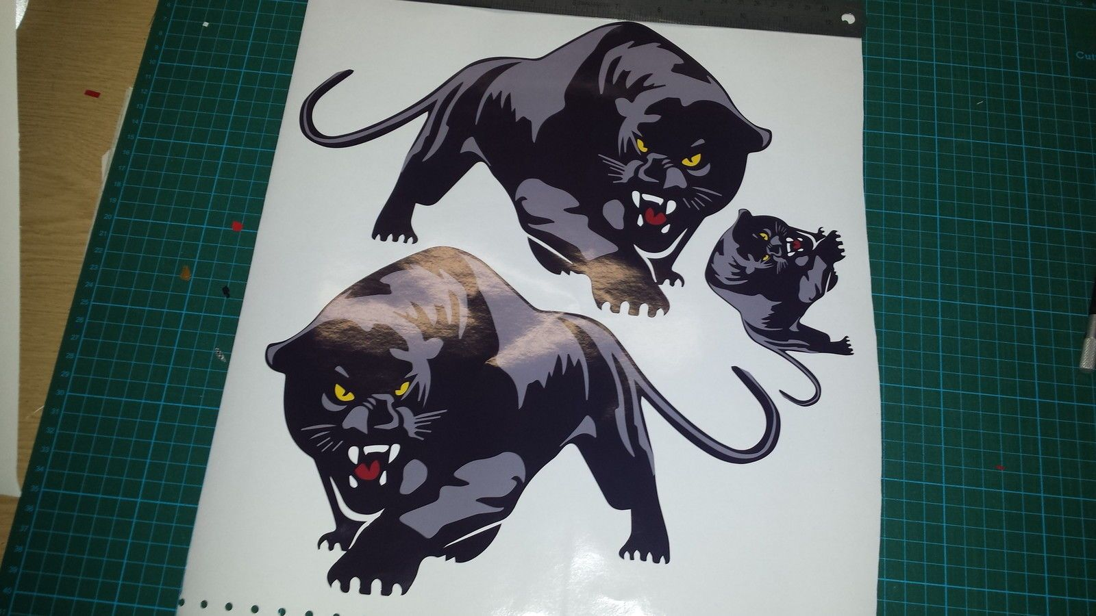3x scomadi panther decals stickers 2 large 1 small custom printed